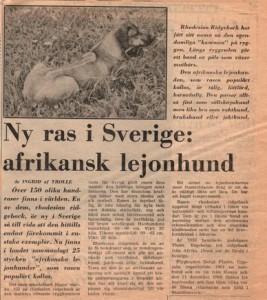 Expressen-4-feb-69